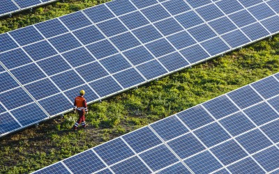 Poland's largest photovoltaic farm launched in Gdańsk