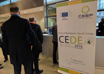 CEDE2016 (24)