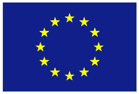 EU Public Consultation on the TTIP – CEEP' general remarks