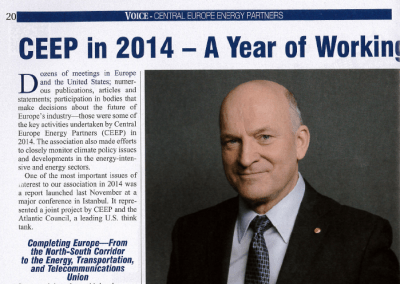 The Warsaw Voice (January 2015): CEEP in 2014 – A Year of Working for Industry