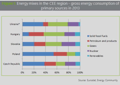 Figure 1. Energy mixes in the CEE region - gross energy consumption of primary sources in 2013