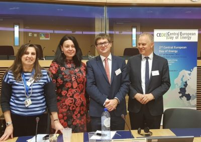 CEDE2017_Andreea Strachinescu_Maciej Jakubik_Leszek Jesien