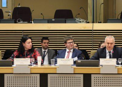 CEDE2017_Andreea Strachinescu_Maciej Jakubik_Leszek Jesien_2