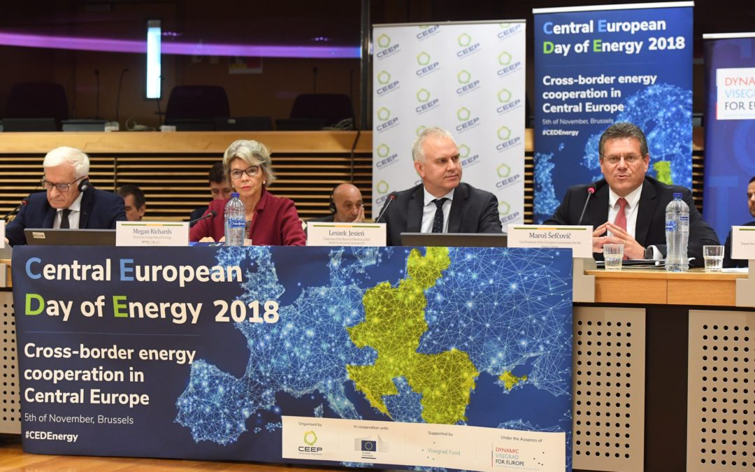 Tremendous accomplishments of cross border energy cooperation in Central Europe
