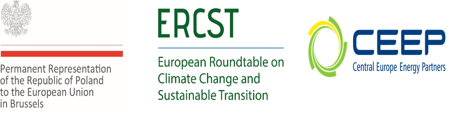 Debate: Funding mechanisms in Phase 4 of the EU ETS
